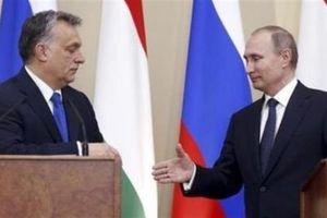 Chuyên gia Đức: Putin không phải là kẻ thù của châu Âu