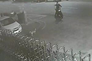 Hi hữu thanh niên cãi nhau với... chó bị cảnh sát bắt
