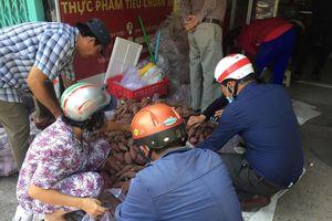 Hơn 500 tấn 'khoai lang nghĩa tình'được giải cứu
