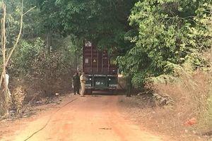 Ngăn cản xe container, một bảo vệ tử vong