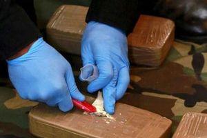 Mỹ: Tịch thu lượng ma túy lớn kỷ lục trong gần 25 năm qua