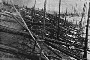 Bí ẩn thế kỷ về vụ nổ 'siêu khủng' xóa sổ 80 triệu cây cối ở Siberia, Nga