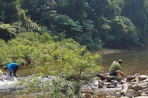 Cách chức, kỷ luật 6 người liên quan đến vụ rừng đầu nguồn Tả Trạch bị phá