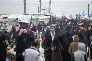 Liên hợp quốc kêu gọi hỗ trợ 8,8 tỷ USD cho Syria