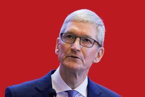 CEO Apple: Không nhất thiết phải có bằng đại học để thành công!