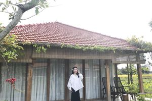 Vi vu khắp Đà Nẵng cùng cô nàng 9X với tiêu chí ngon –bổ - rẻ cực độc đáo