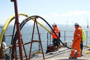 Cáp biển APG ngày 11/4 mới sửa xong, Internet Việt Nam đi quốc tế bị ảnh hưởng