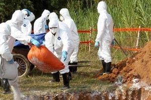 Nhờ công an xử lý người tung tin thất thiệt về thịt heo ở Cà Mau