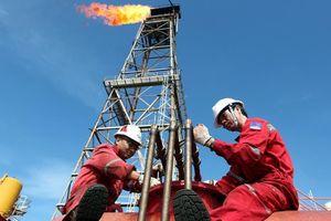 Điều tra dự án dầu khí tỷ USD có dấu hiệu sai phạm
