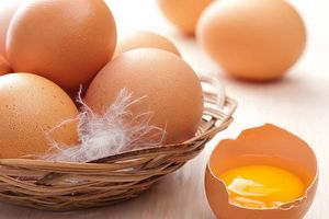 Món ăn - bài thuốc từ trứng chữa nhiều bệnh cực hiệu quả