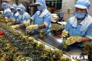 Rau quả Việt Nam còn nhiều dư địa xuất khẩu vào Trung Quốc