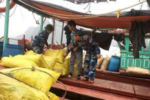 Quảng Ninh: Bắt 3 tàu khai thác thủy sản trái phép