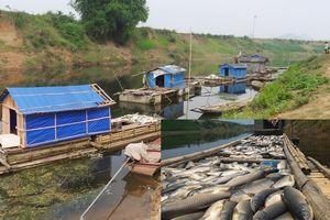 Chung khát vọng xanh hóa những dòng sông: Để 'cứu' các dòng sông