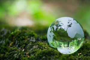 Hướng tới tăng trưởng xanh bằng công cụ thuế