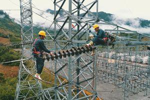 EVN: Tổn thất điện năng giảm mạnh qua từng năm