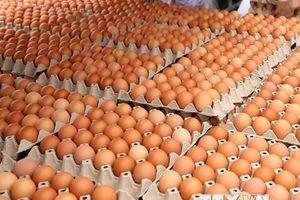 Sản phẩm trứng gà tươi ăn liền ra mắt tại thị trường Việt Nam