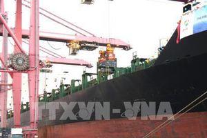 Tàu container lớn nhất từ trước đến nay cập cảng T.p Hồ Chí Minh