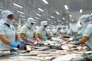 Tham vọng vượt lên dẫn đầu ngành thủy sản có quá sức với Nam Việt?