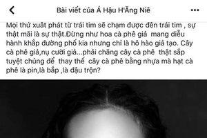H'Ăng Niê bị khán giả bủa vây vì nghi vấn 'mỉa mai' đồng hương H'Hen Niê