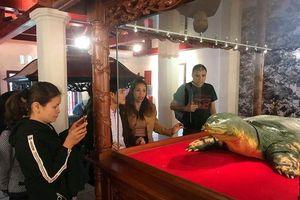 Tiêu bản cụ rùa hồ Gươm đã được đưa vào đền Ngọc Sơn trưng bày phục vụ khách tham quan