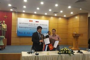 Nhiều doanh nghiệp Nga có nhu cầu đầu tư tại Việt Nam