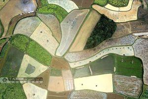 Đẩy mạnh xây dựng thương hiệu Quảng Tây 'phong cảnh hữu tình, sinh thái'