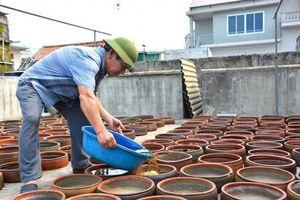 Quy phạm thực hành sản xuất nước mắm: Cần đảm bảo sự đồng thuận