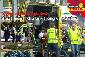 Vụ xả súng làm 49 người chết, một đội tuyển thoát chết khó tin