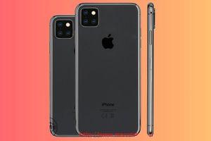 iPhone 11 sẽ có màn hình 6,5 inch, hỗ trợ 3 camera?