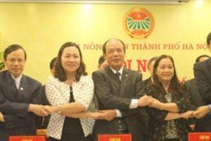 19 Hội Nông dân tỉnh, thành phối hợp tiêu thụ nông sản cho nông dân