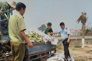 Bình Phước: Tiêu hủy hơn 6 tấn xoài nhập lậu