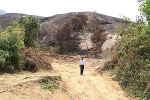 Cấm thu tiền, sửa đường cho du khách vào chụp ảnh tảng đá voi khổng lồ