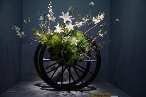 Những tác phẩm tuyệt đẹp làm từ hoa tại triển lãm Ikebana