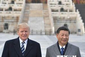 Cuộc gặp thượng đỉnh Trung-Mỹ có thể bị trì hoãn tới tháng 6