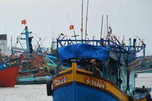 21 ngư dân đi trên 3 tàu cá bị Thái Lan bắt giữ khi tránh bão đã về Việt Nam