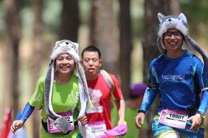 Siêu Marathon Quốc tế Dalat Ultra Trail: Cuộc đua giữa ngàn thông