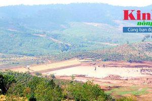 Đắk Nông: Bắt tạm giam lãnh đạo do sai phạm tại công trình thủy lợi