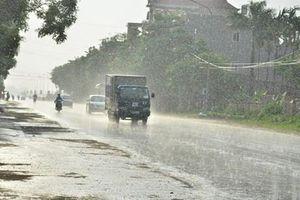 An Giang: Xuất hiện cơn 'mưa vàng' giải nhiệt bầu không khí khô nóng