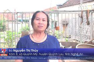 Phát hiện thêm 2 ổ dịch tả lợn châu Phi tại Nghệ An
