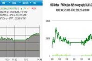 Khởi sắc trở lại, VN-Index tăng gần 8 điểm