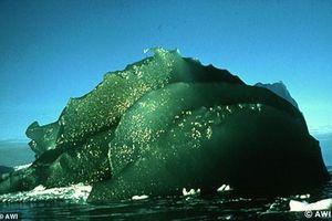 Bí ẩn trăm năm về tảng băng xanh chỉ có ở Nam Cực