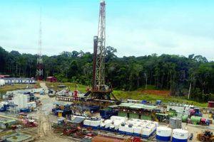 Ngoài dự án tại Venezuela đang 'sa lầy', các dự án ở nước ngoài của PVN ra sao?