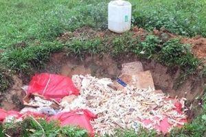 Quảng Ninh: 600 kg chân gà đang phân phân hủy trên đường đi tiêu thụ