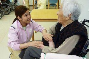 Lao động Việt Nam tại Nhật Bản đối mặt rủi ro