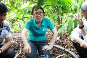 Lâm Đồng: Tiết kiệm 50% nước tưới cà phê bằng công nghệ thông minh