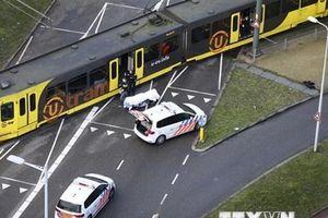 Tình báo Thổ Nhĩ Kỳ điều tra động cơ của nghi phạm xả súng tại Utrecht