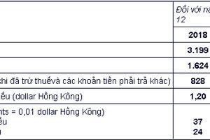 Doanh thu năm 2018 của Khách sạn Miramar và công ty đầu tư đạt 3.199 triệu dollar Hồng Kông