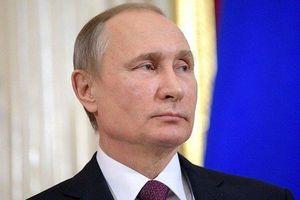 TT Putin ký luật 'mạnh tay' với kẻ tung tin tức giả mạo