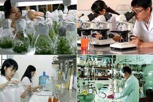386 doanh nghiệp được cấp Giấy Chứng nhận Doanh nghiệp Khoa học và Công nghệ