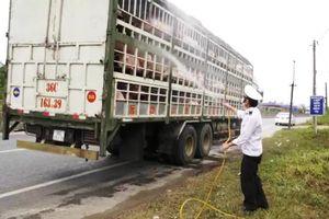 Quảng Trị: Tăng cường thêm chốt kiểm dịch liên ngành phòng chống dịch tả lợn Châu Phi